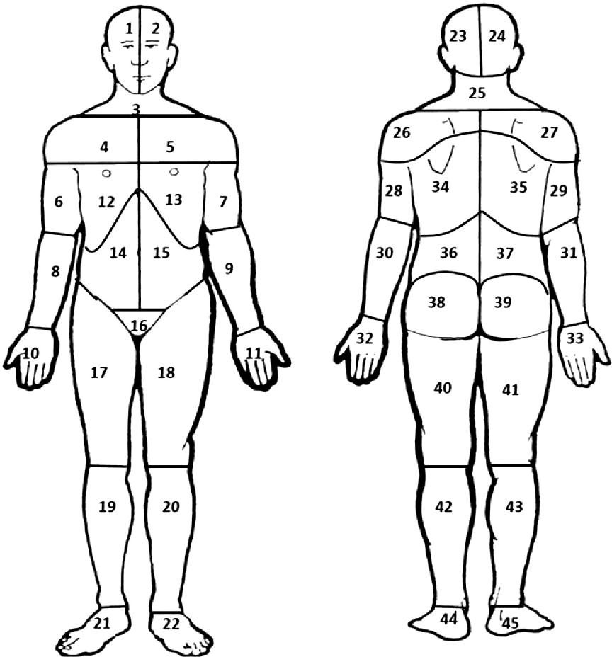 Figure 1 From The Reliability Of Measuring Pain