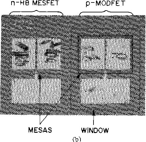Fig. 1. Complementary p-MODFET/n-HB MESFET transistor pair. Prior to mesa fabrication, a window to the p-(Al, Ga)As layer is formed by selective chemical etching. The gate length, gate width, and