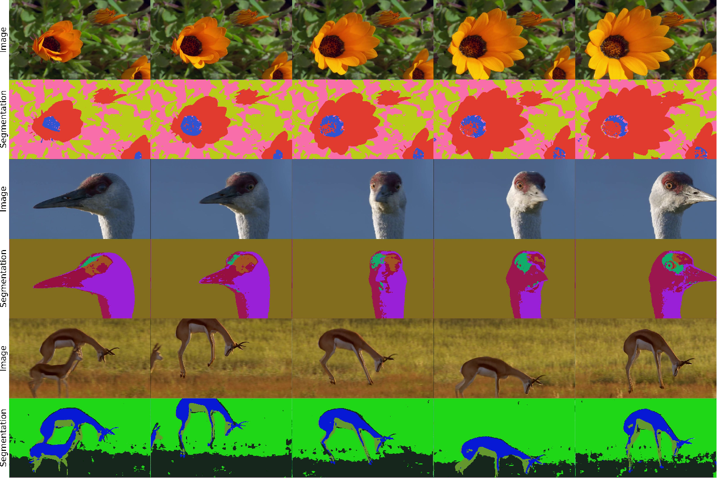 Figure 2 for Unsupervised Learning of Image Segmentation Based on Differentiable Feature Clustering