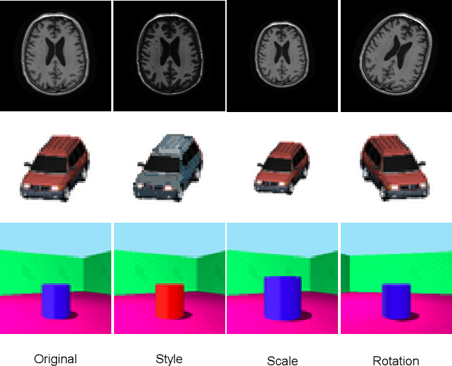 Figure 1 for A Tutorial on Learning Disentangled Representations in the Imaging Domain