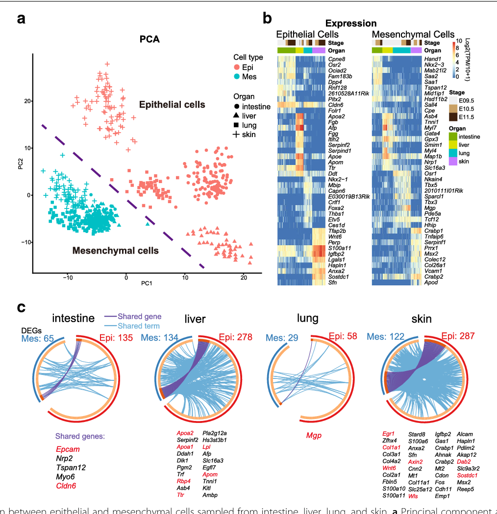 Figure 2 from Single-cell RNA-seq analysis unveils a prevalent