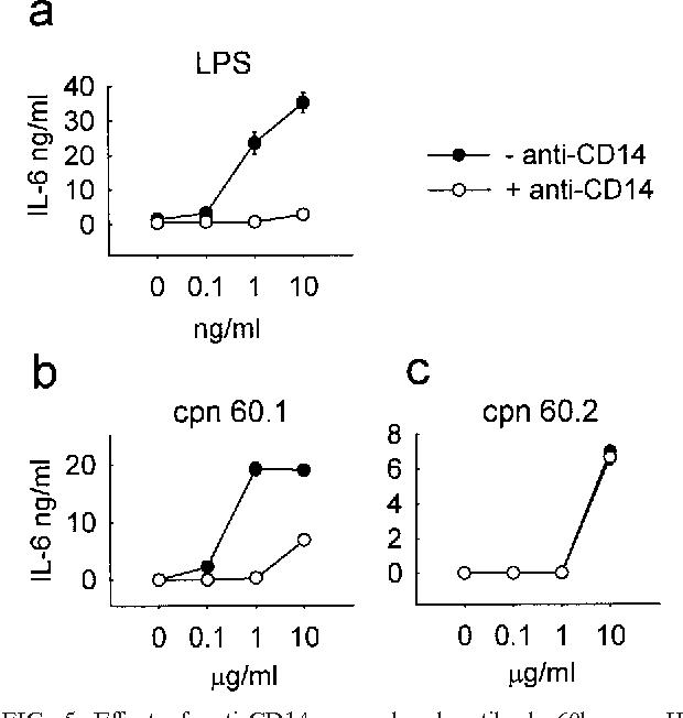 Mycobacterium tuberculosis chaperonin 60 1 is a more potent cytokine