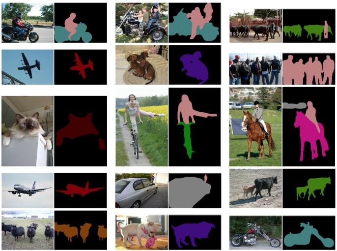Figure 1 for Image Segmentation Using Deep Learning: A Survey