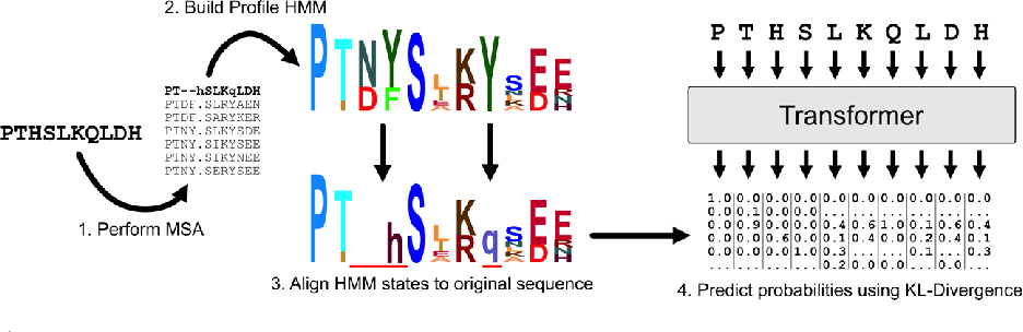 Figure 1 for Profile Prediction: An Alignment-Based Pre-Training Task for Protein Sequence Models
