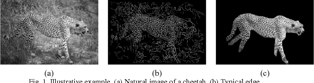 Figure 1 for Image Optimization and Prediction