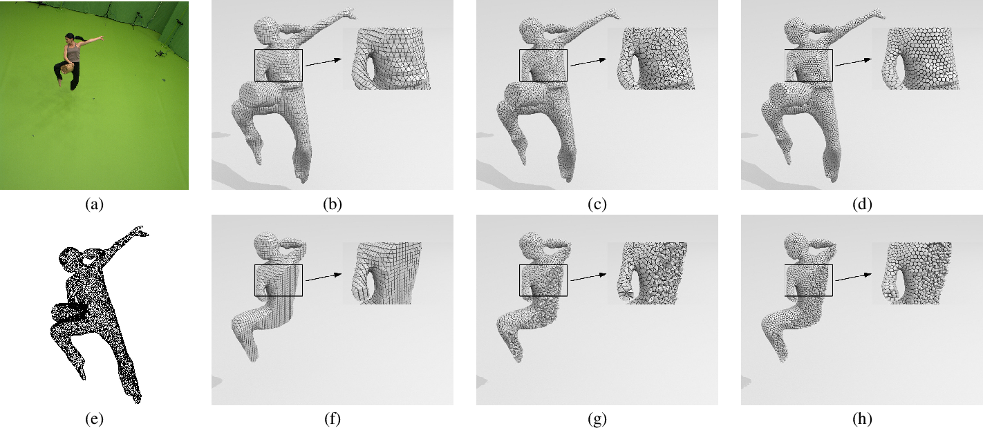 Figure 4 for Shape Animation with Combined Captured and Simulated Dynamics