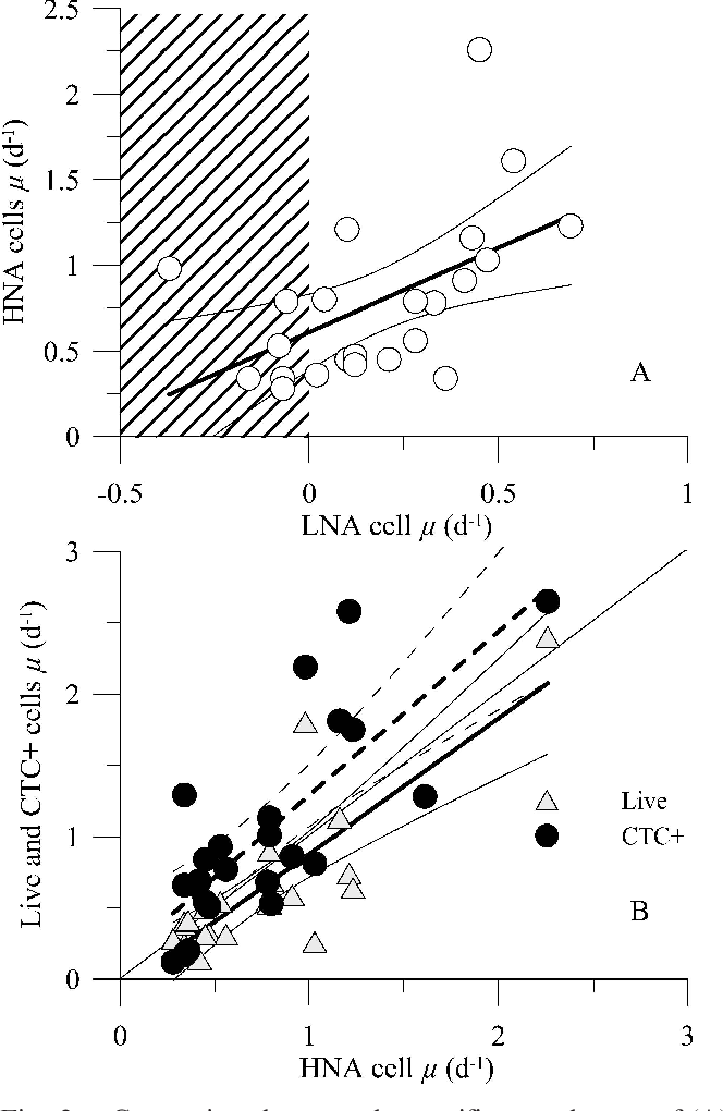 Single Cell Physiological Structure And Growth Rates Of