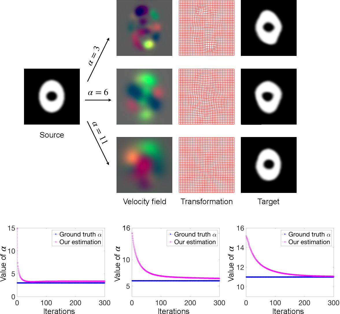 Figure 4 for Deep Learning for Regularization Prediction in Diffeomorphic Image Registration