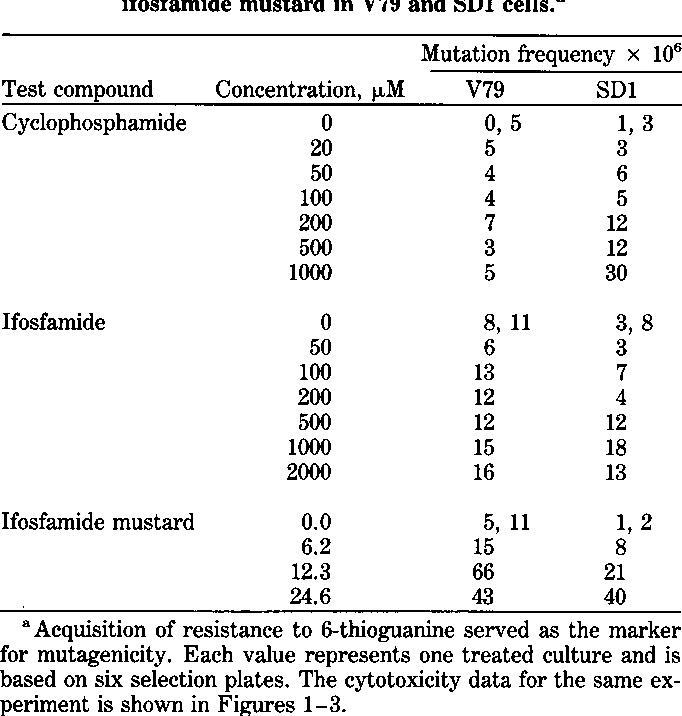 Table 1. Mutagenicity of cyclophosphamide, ifosfamide, and ifosfamide mustard in V79 and SD1 cells.a