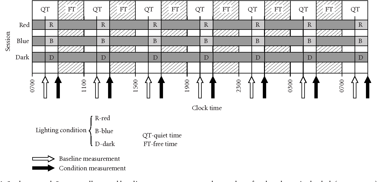 Figure 1: Study protocol. Seven equally spaced baseline measurements were always taken after three hours in the dark (open arrows), except for the first baseline measurement that was taken after one hour in the dark. Subjects were assigned to one of three sessions (red, blue, and dark) corresponding to one of the three lighting conditions they would experience during that session (R, B, and D). Except for the last one, lighting condition measurements were taken one hour after and three hours before each baseline measurements.