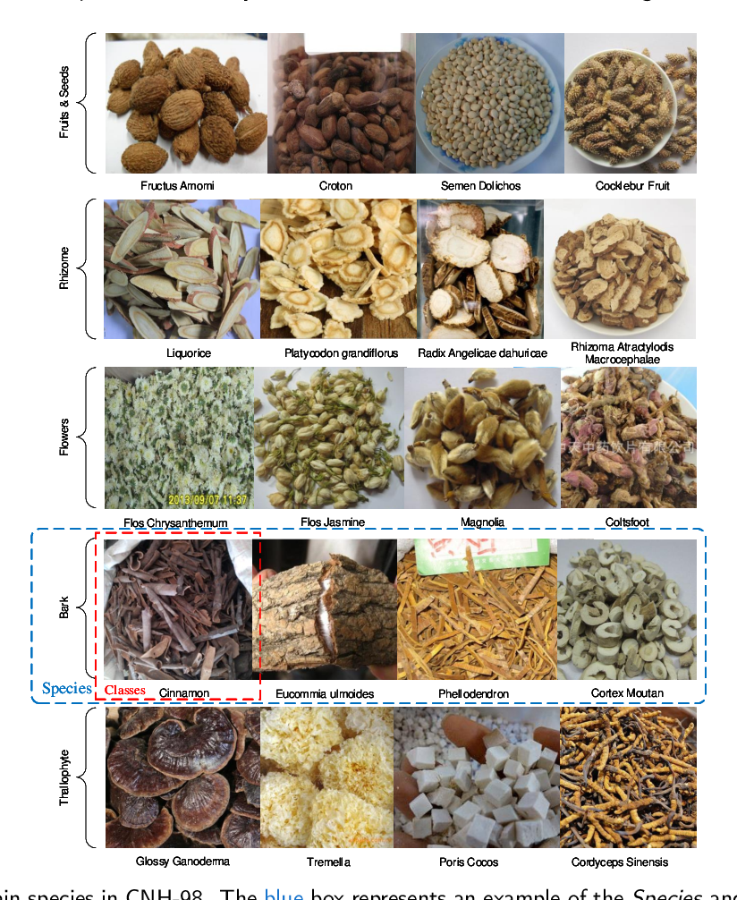 Figure 1 for Multiple Attentional Pyramid Networks for Chinese Herbal Recognition