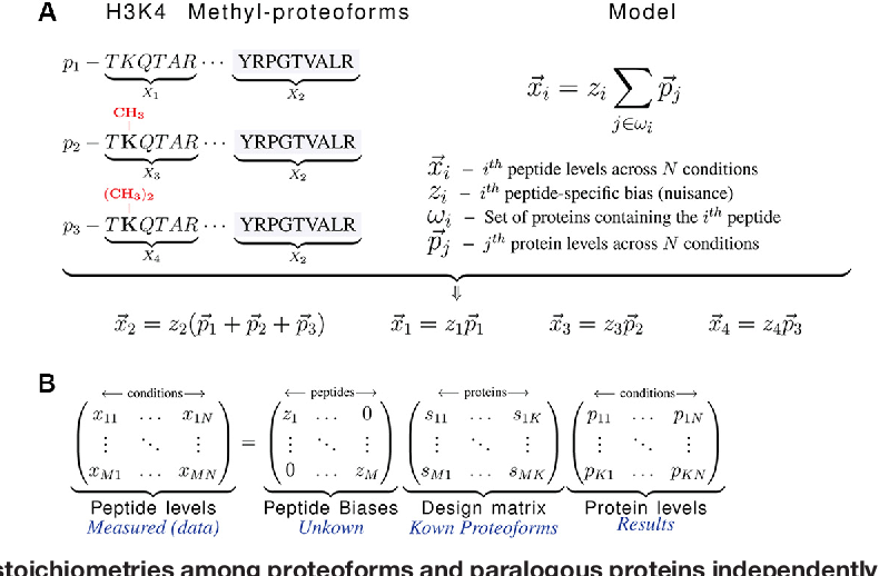 Figure 1 for Quantifying homologous proteins and proteoforms