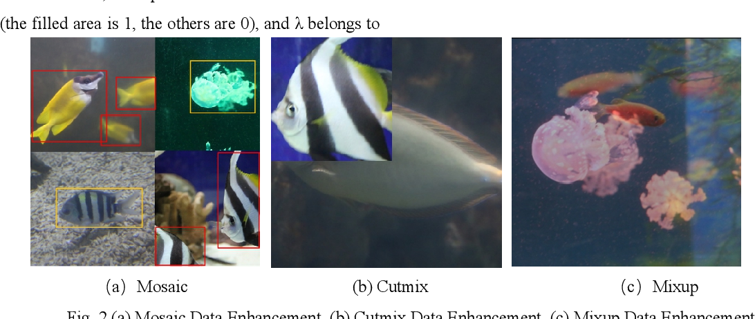 Figure 1 for Research on Optimization Method of Multi-scale Fish Target Fast Detection Network