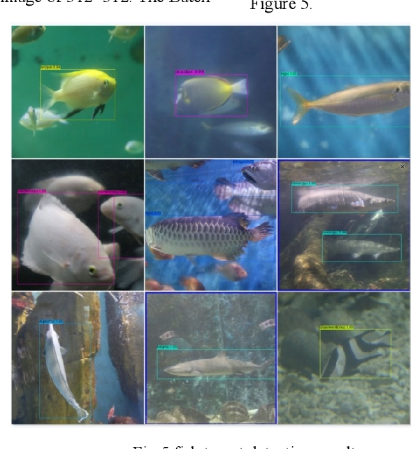 Figure 3 for Research on Optimization Method of Multi-scale Fish Target Fast Detection Network
