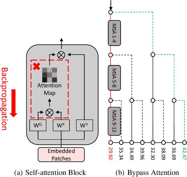 Figure 1 for Towards Transferable Adversarial Attacks on Vision Transformers