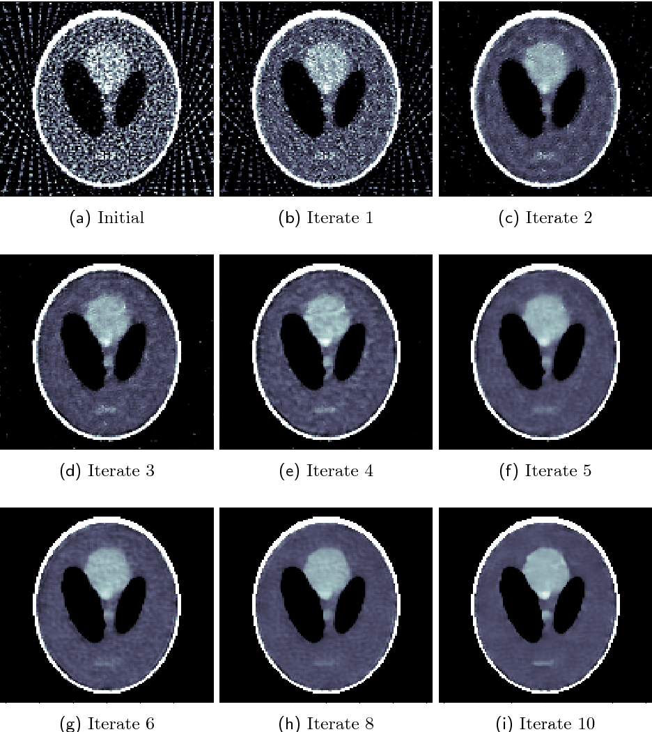 Figure 4 for Solving ill-posed inverse problems using iterative deep neural networks