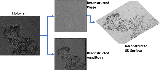 Figure 1 for Deep DIH : Statistically Inferred Reconstruction of Digital In-Line Holography by Deep Learning