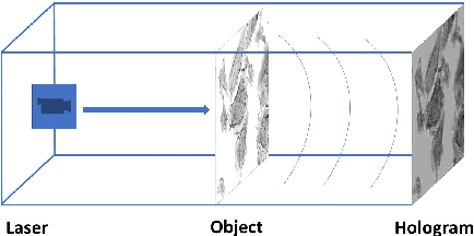 Figure 2 for Deep DIH : Statistically Inferred Reconstruction of Digital In-Line Holography by Deep Learning