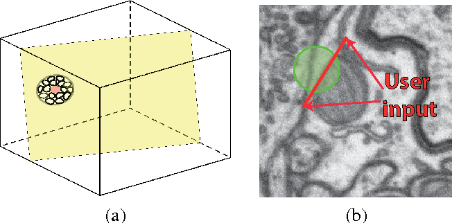 Figure 3 for Geometry in Active Learning for Binary and Multi-class Image Segmentation