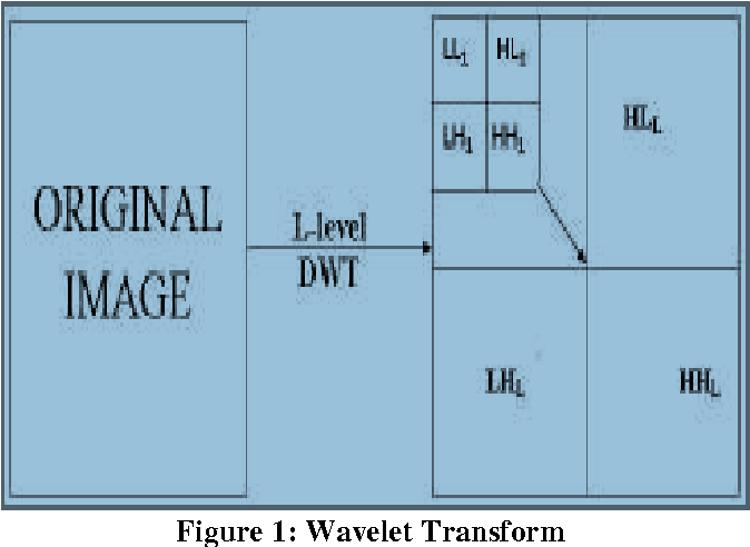 PDF] Image Compression Using New Wavelet Bi-Orthogonal Filter