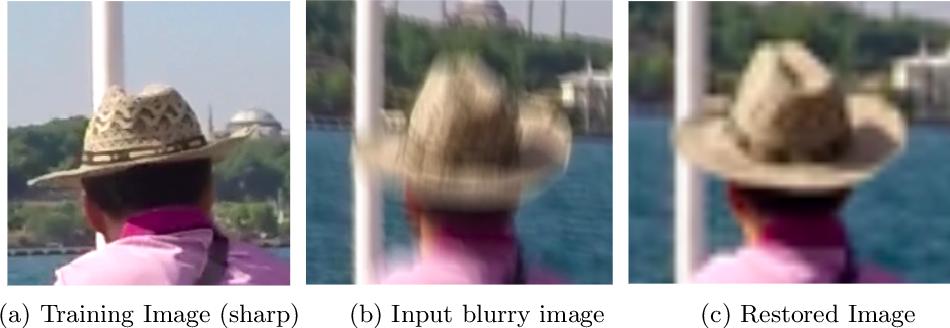 Figure 1 for Blind Motion Deblurring through SinGAN Architecture