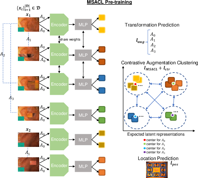 Figure 1 for Multi-centred Strong Augmentation via Contrastive Learning for Unsupervised Lesion Detection and Segmentation
