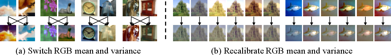 Figure 1 for SelfNorm and CrossNorm for Out-of-Distribution Robustness
