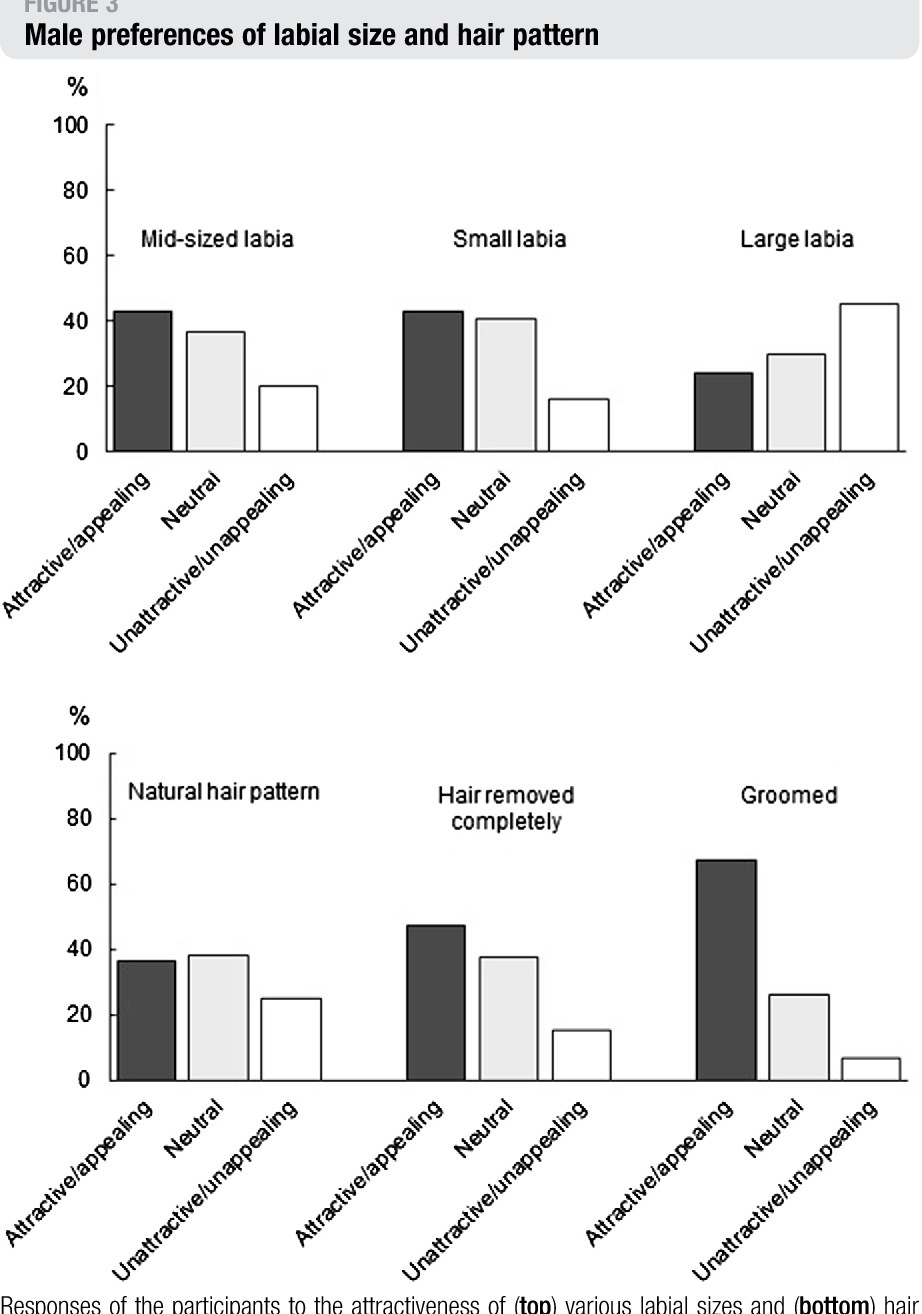 Figure 3 Male Preferences Of Labial Size And Hair Pattern