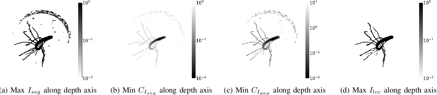 Figure 4 for Robust Skeletonization for Plant Root Structure Reconstruction from MRI