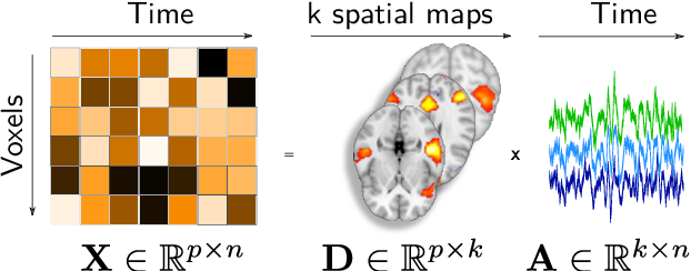 Figure 1 for Fine-grain atlases of functional modes for fMRI analysis