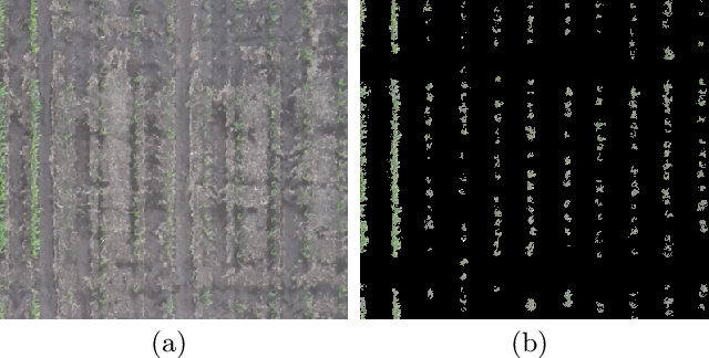 Figure 4 for Estimating Phenotypic Traits From UAV Based RGB Imagery