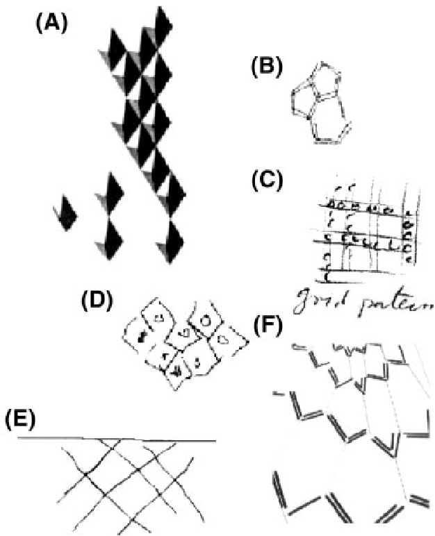Figure 2 From The Perceptual Consequences Of Visual Loss Positive