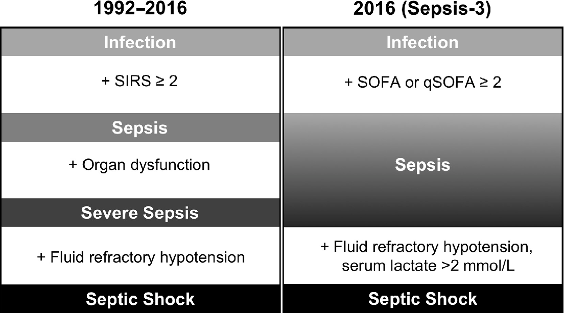 Figure 1 From Sepsis In Pregnancy And The Puerperium Semantic Scholar