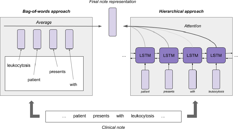 Figure 3 for Improved Patient Classification with Language Model Pretraining Over Clinical Notes