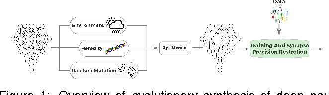 Figure 1 for Exploring the Imposition of Synaptic Precision Restrictions For Evolutionary Synthesis of Deep Neural Networks