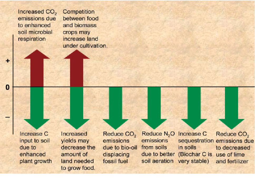 Review of the pyrolysis platform for coproducing bio-oil and biochar