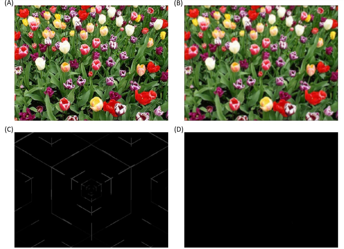 Figure 2 for A General Approach for Using Deep Neural Network for Digital Watermarking