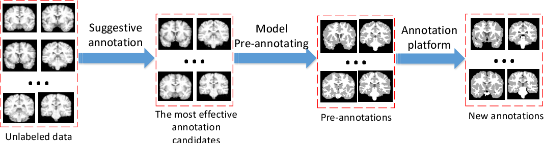 Figure 3 for Efforts estimation of doctors annotating medical image