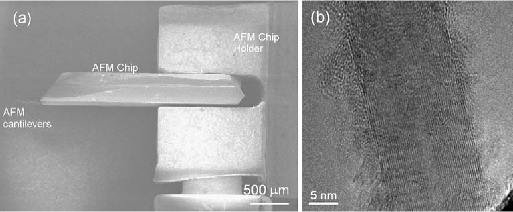 Fig. 4. (a) SEM image of an AFM chip in the homemade AFM chip holder. (b) TEM image of a portion of a MWCNT fragment attached to the AFM tip