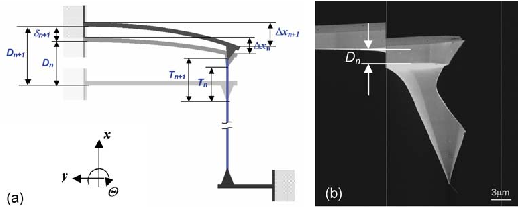 Fig. 6. (a) Schematic of piezoelectric bender response calibration. (b) The response of an unloaded cantilever to an applied dc bias voltage
