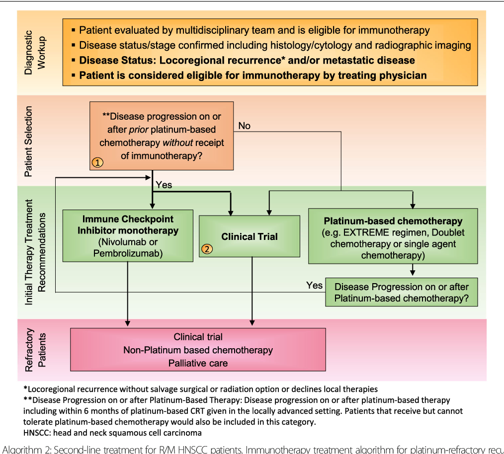 The Society for Immunotherapy of Cancer consensus statement
