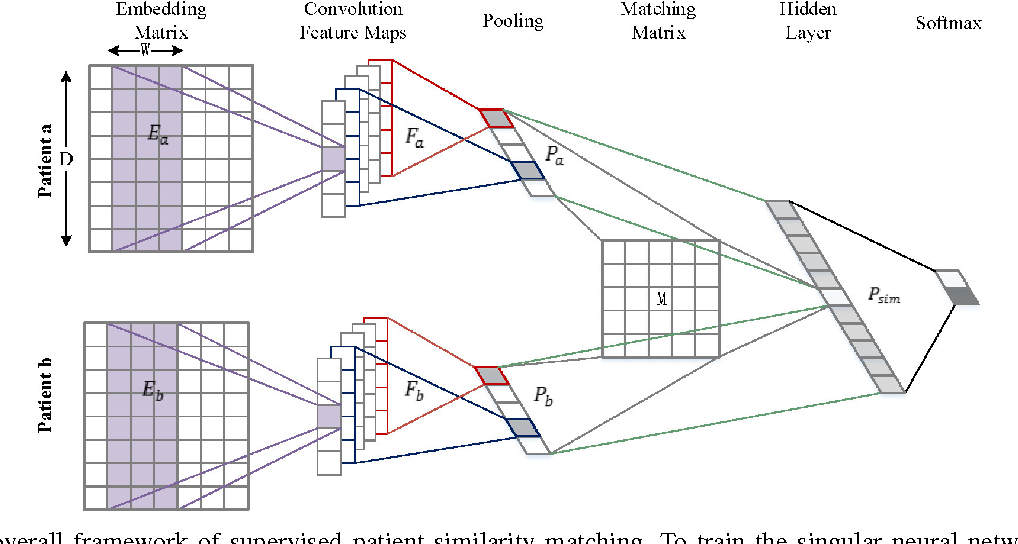 Figure 1 for Measuring Patient Similarities via a Deep Architecture with Medical Concept Embedding