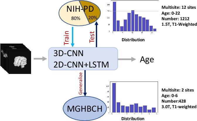 Figure 1 for Brain Age Estimation Using LSTM on Children's Brain MRI