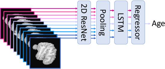 Figure 2 for Brain Age Estimation Using LSTM on Children's Brain MRI