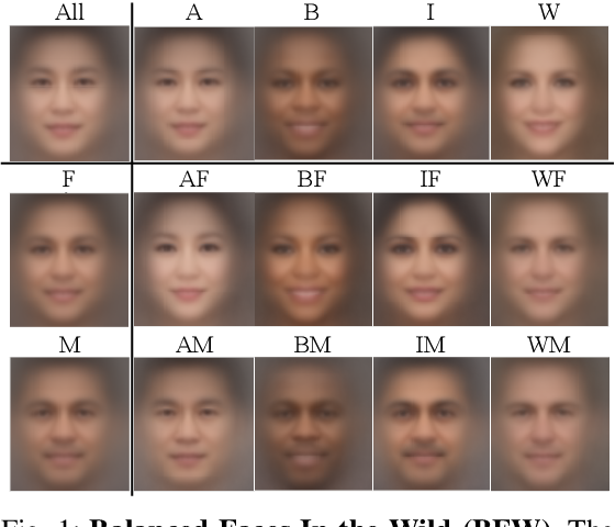 Figure 1 for Face Recognition: Too Bias, or Not Too Bias?