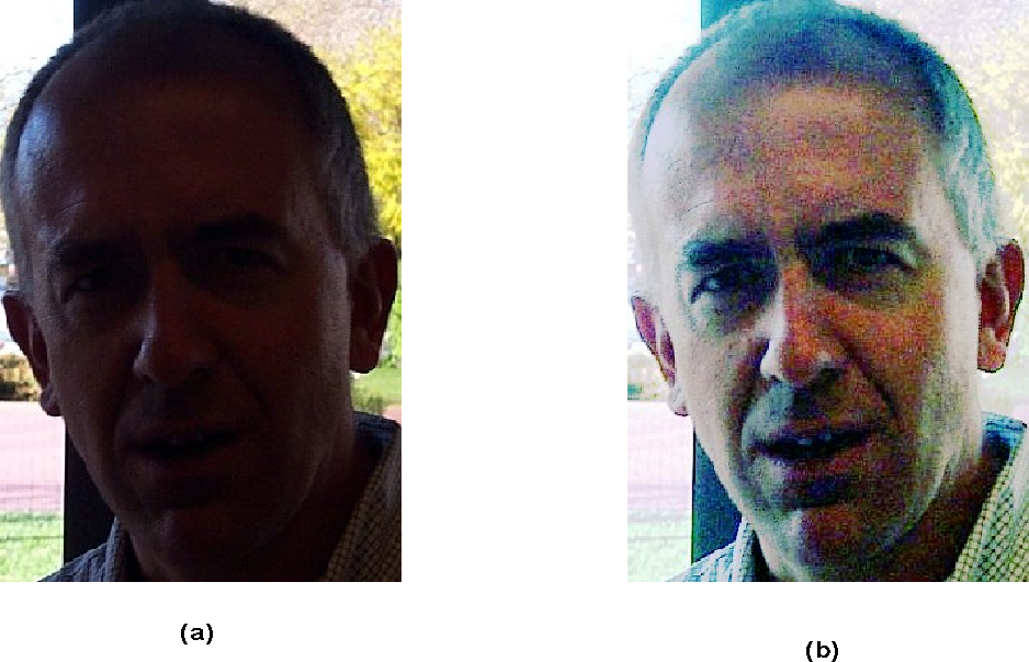 Figure 1 for HSI based colour image equalization using iterative nth root and nth power