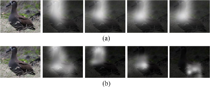 Figure 4 for Diversified Visual Attention Networks for Fine-Grained Object Classification