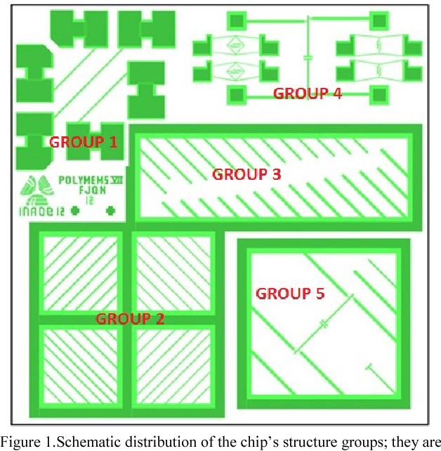Figure 1.Schematic distribution of the chip's structure groups; they are identified with numbers explained in the text.
