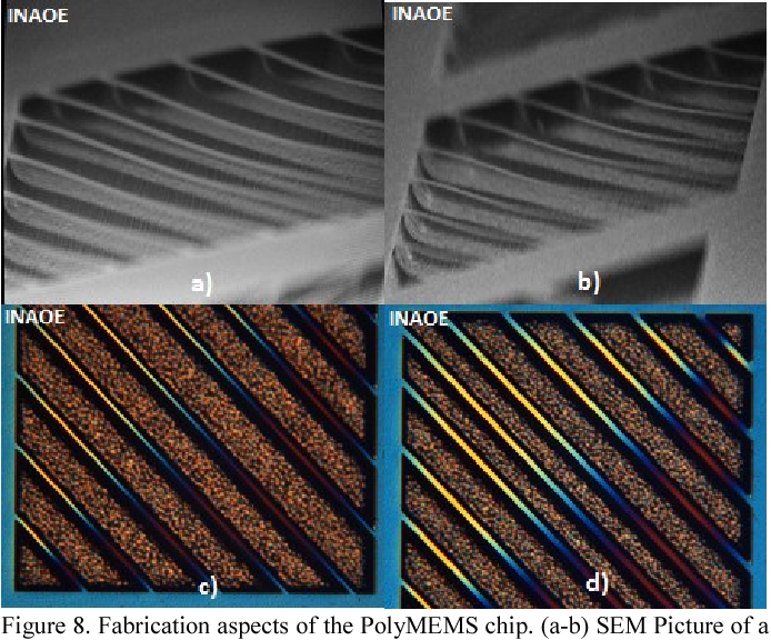 Figure 8. Fabrication aspects of the PolyMEMS chip. (a-b) SEM Picture of a Bridge array. (c-d) View of the Bridge array whit a light colored filter with an optical microscope.