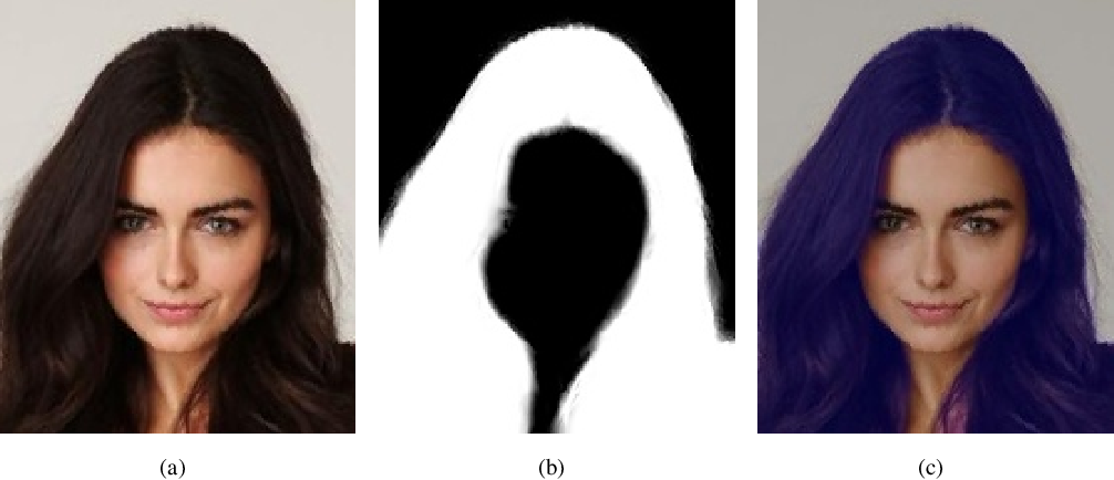 Figure 1 for Real-time Segmentation and Facial Skin Tones Grading